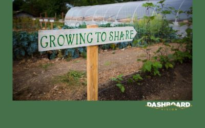 Keeping Dashboards Fresh – Why Every Dashboard Needs a Gardener